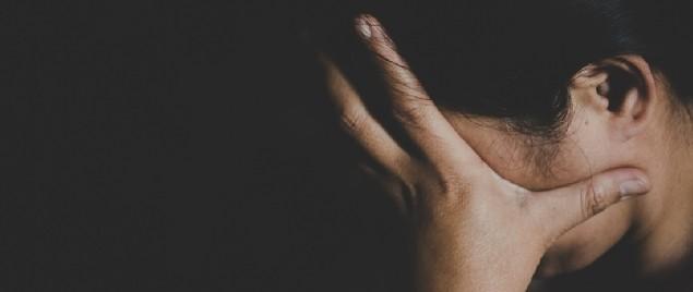 Domestic Violence Survivors Justice Act Passes