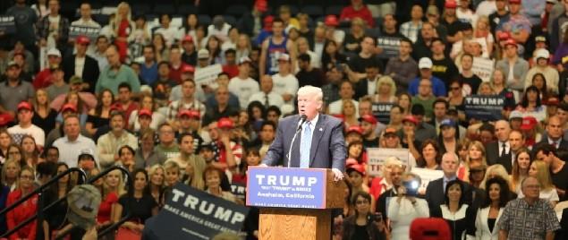 Trump s Greatest Hits Against H-1B Visas