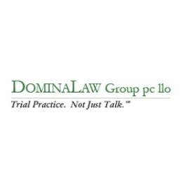 Domina Law Group logo